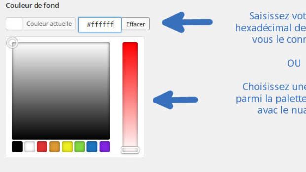 theme-color