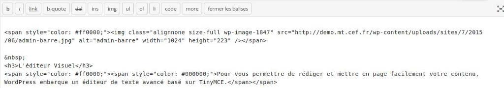 wp-editor-text